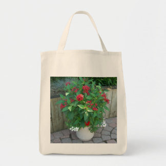 Potted Flowers Bag