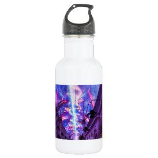 Power Of Fremont Street 532 Ml Water Bottle