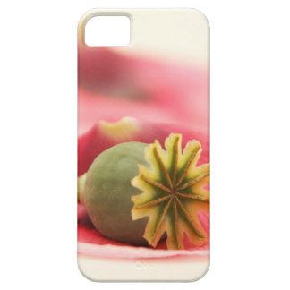 Precious Poppy Petals iPhone 5 Cover