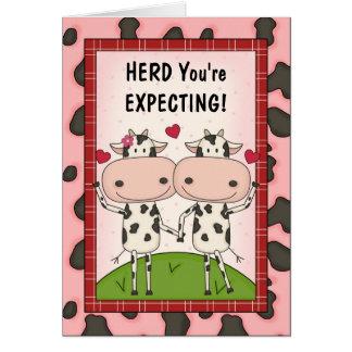 Pregnancy - Cows for Expectant Parents Card