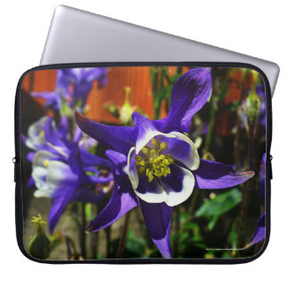 Pretty Blue Columbine Flower Laptop Case
