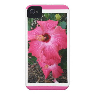 Pretty in Pink-Flower in Bloom iPhone 4 Cover