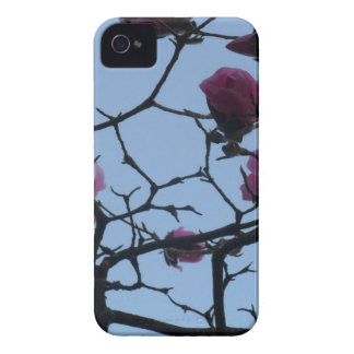 Pretty Pink Flowers against a Blue Sky iPhone 4 Covers