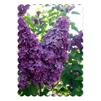 Pretty Purple Lilacs 5x7 Paper Invitation Card