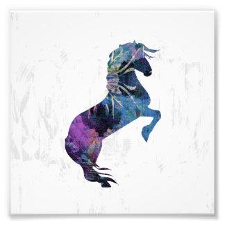 Pretty Rearing Fantasy Horse Art Photograph