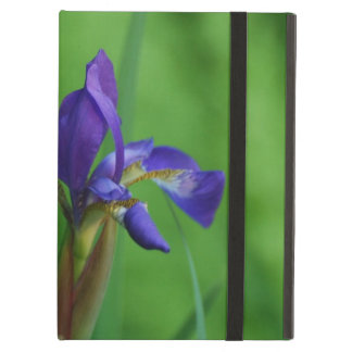 Pretty Siberian Iris iPad Air Case