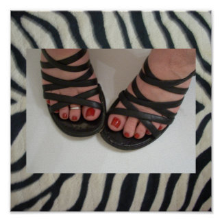 Pretty Toes Pedicure Zebra Print Poster