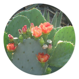 Prickly Pear Cactus Green Red Bloom 13 Cm X 13 Cm Square Invitation Card