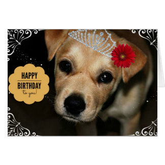 Princess Puppy Birthday Card