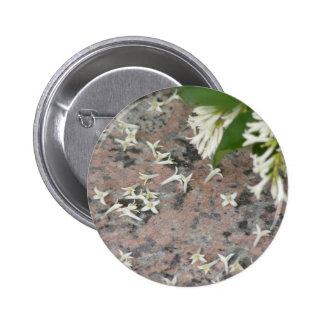 Privet Blossoms on Granite Pins