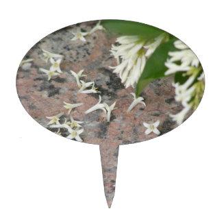 Privet Blossoms on Granite Cake Picks