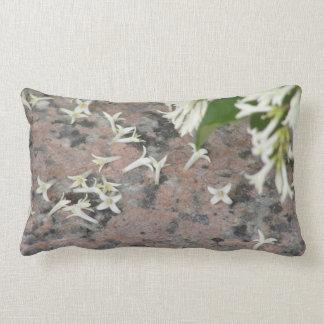 Privet Blossoms on Granite Pillows