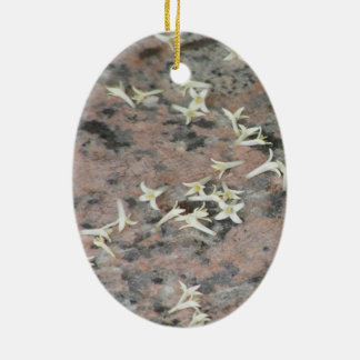Privet Blossoms on Granite Christmas Tree Ornaments