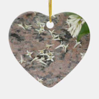 Privet Blossoms on Granite Ornaments