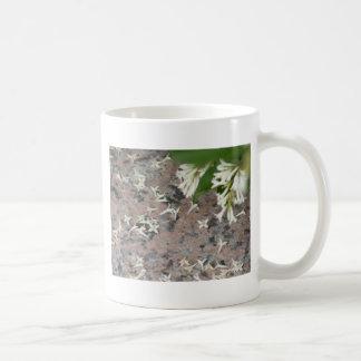 Privet Blossoms on Granite Classic White Coffee Mug