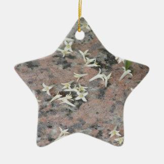 Privet Blossoms on Granite Ornament