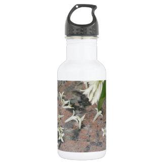 Privet Blossoms on Granite 18oz Water Bottle