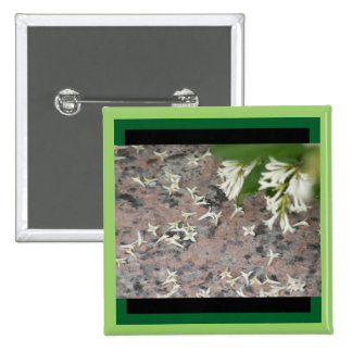 Privet Blossoms on Granite Pinback Button