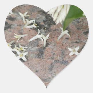 Privet Blossoms on Granite Heart Sticker