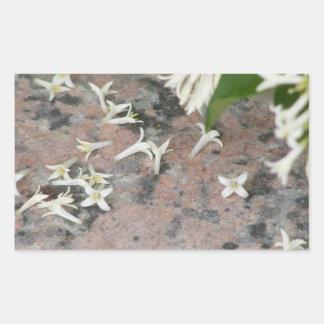 Privet Blossoms on Granite Rectangular Stickers