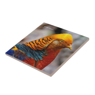Profile of a Golden Red Pheasant Tile
