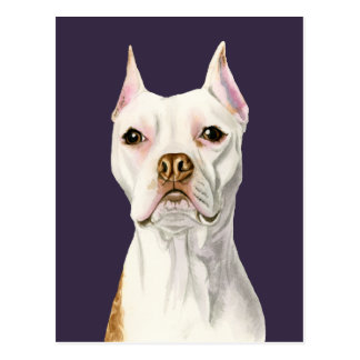 """""""Proud and Tall"""" White Pit Bull Dog Portrait Postcard"""