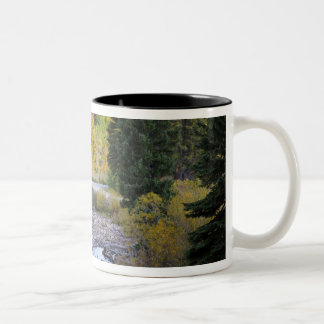 Provo River and aspen trees 8 Two-Tone Coffee Mug