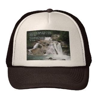 Psalm 111:2  Waterfall Cap