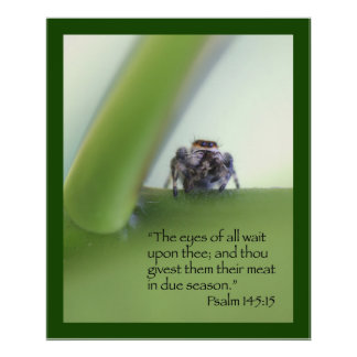 Custom Wait Motivational Posters & Photo Prints | Zazzle.co.nz