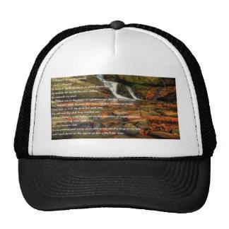 Psalm 23 mesh hats