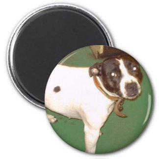 Pub Dog 1 6 Cm Round Magnet