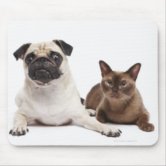 Pug and Burmese cat Mouse Pad