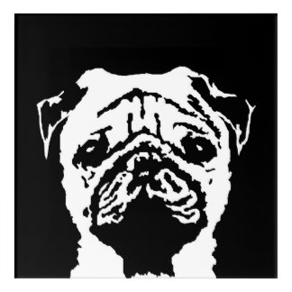 Pug Black & White Acrylic Wall Art