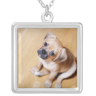 Pug Cross Cavalier King Charles Spaniel Silver Plated Necklace