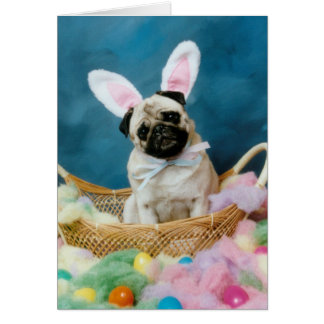 Pug Dog Easter Bunny Greeting Card