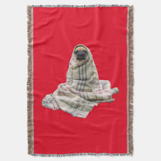 Pug in a Blanket Custom Background Color