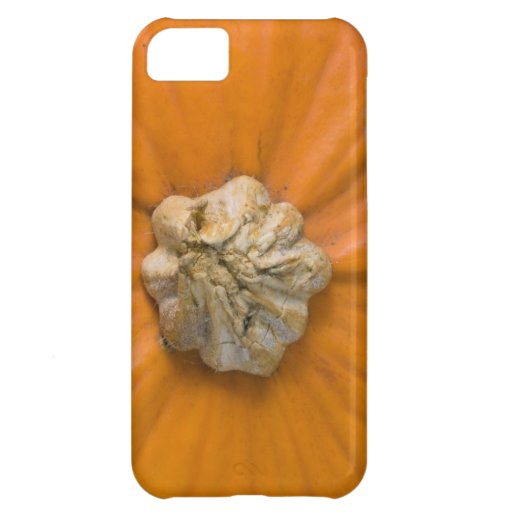 Pumpkin Head Case For iPhone 5C