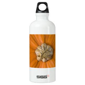 Pumpkin Head SIGG Traveller 0.6L Water Bottle