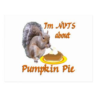 Pumpkin Pie Squirrel Post Card