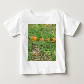 Pumpkins all in a row baby T-Shirt