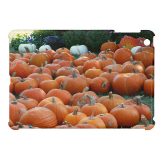 Pumpkins and Mums Autumn Harvest Photography Case For The iPad Mini