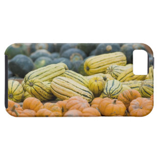 Pumpkins and squash on display at farmer's iPhone 5 cases