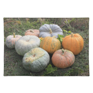 Pumpkins and Squashes Placemat