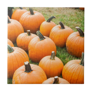 Pumpkins for Sale at a Farmer's Market Small Square Tile