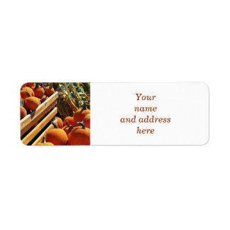 Pumpkins Return Address Label