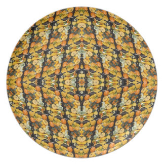 Pumpkins, Squash, and Gourds - Abstract Plate