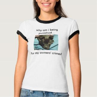 Punish owners, not dogs shirt. T-Shirt