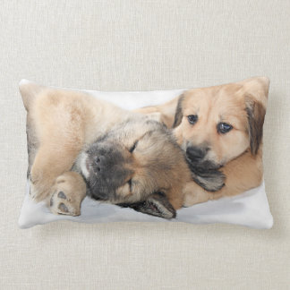 Puppies Cushions