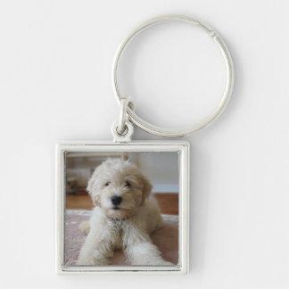 Puppy Goldendoodle Keychain
