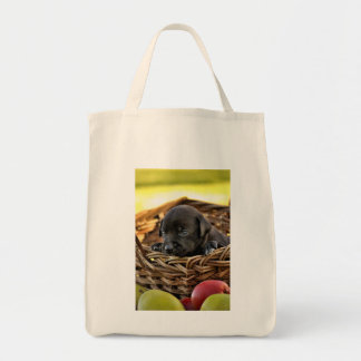 Puppy in Basket Organic Grocery Tote
